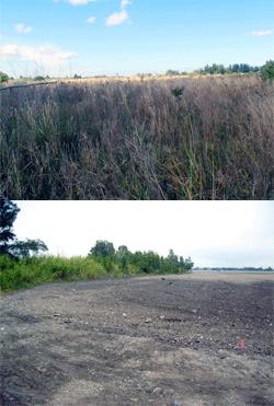 Residential Wetlands Permitting