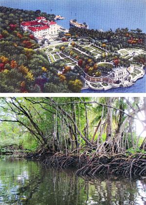 Vizcaya Southern Lagoon & Northern Canal Tidal Swamp Landscape Environmental Restoration